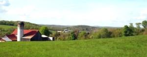 Farm 4-x